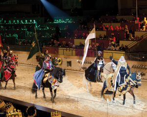 A parade of knights welcome their audience on horseback