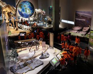 Students exploring prehistoric dinosaur bones exhibit